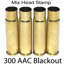 300 AAC Blackout MHS Primed